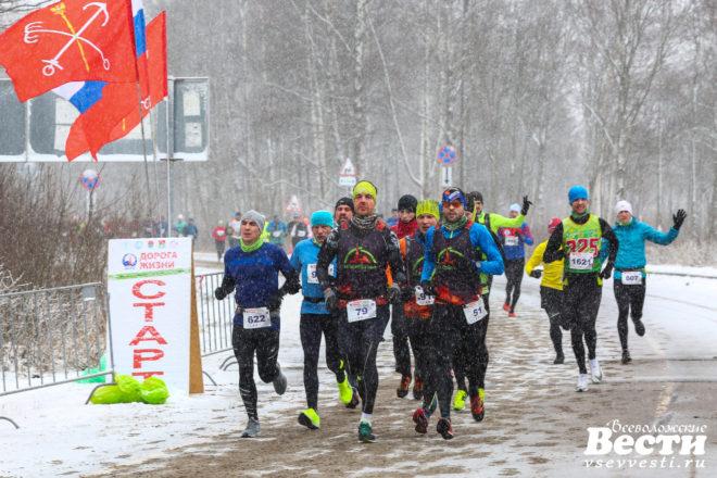 По Дороге жизни пробежали две с половиной тысячи марафонцев